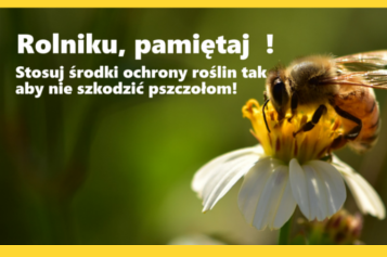 baner-pszczoły