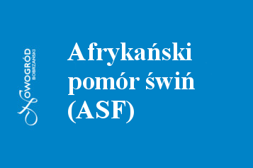 baner ASF