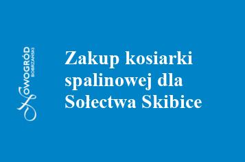 skibice
